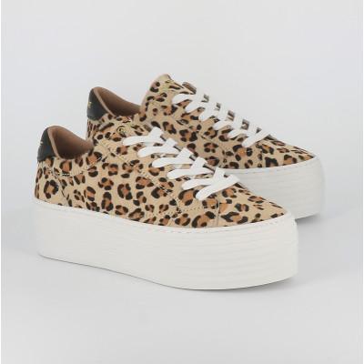 spice sneaker pony leopard